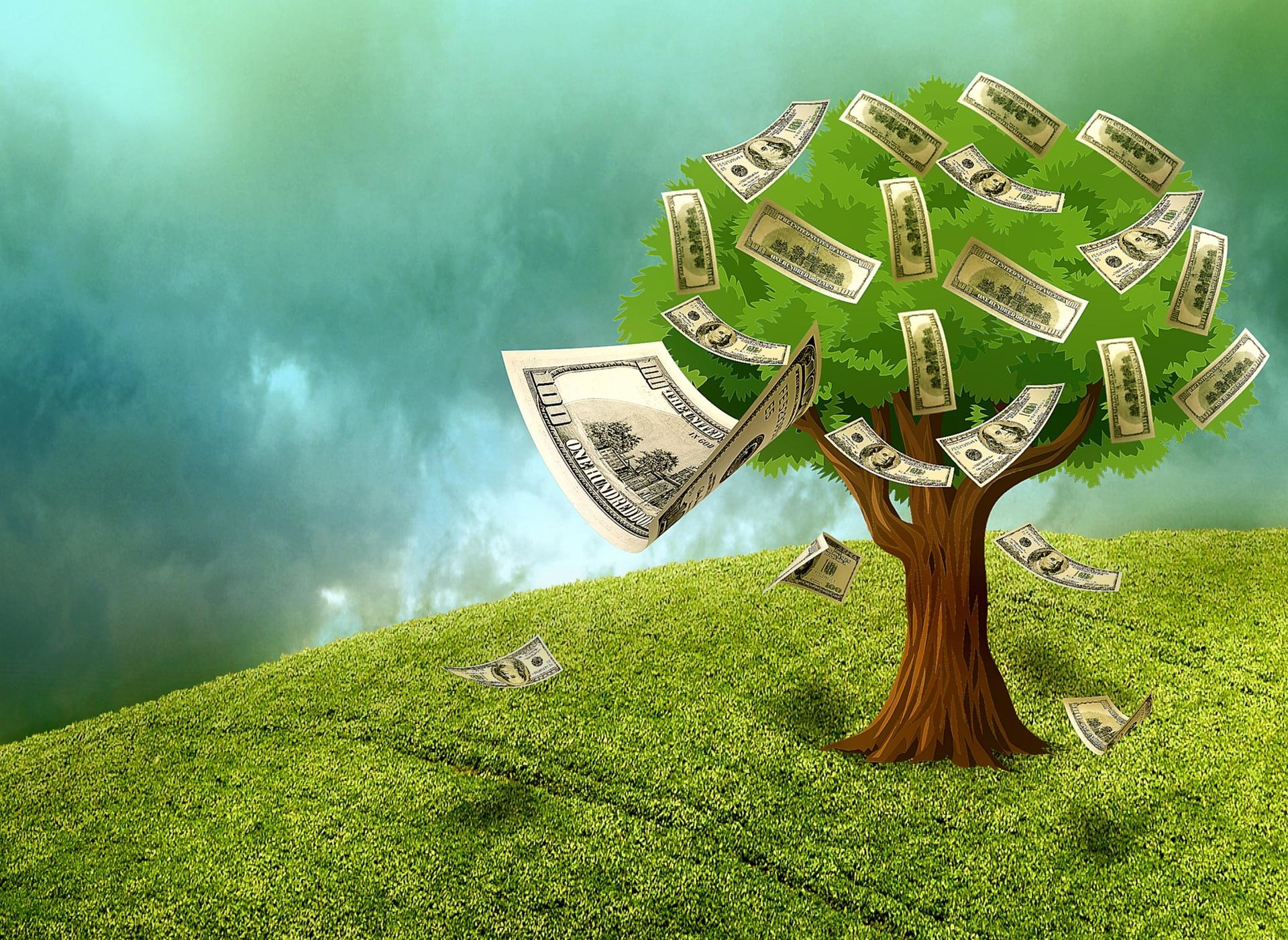 ¿Qué diferencia hay entre los minicréditos online y los créditos rápidos?